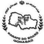 Profile picture of هیات کاراته دو شهرستان گناباد